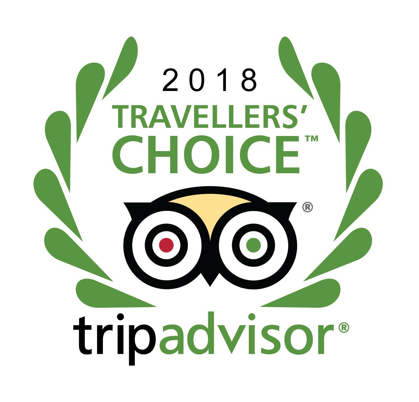 Travelers_choice_logo copy.jpg