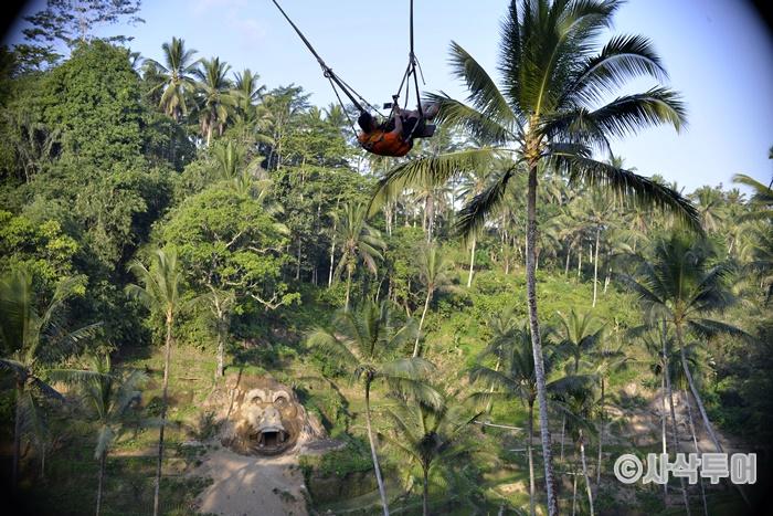 Swing700_SIN6519.JPG