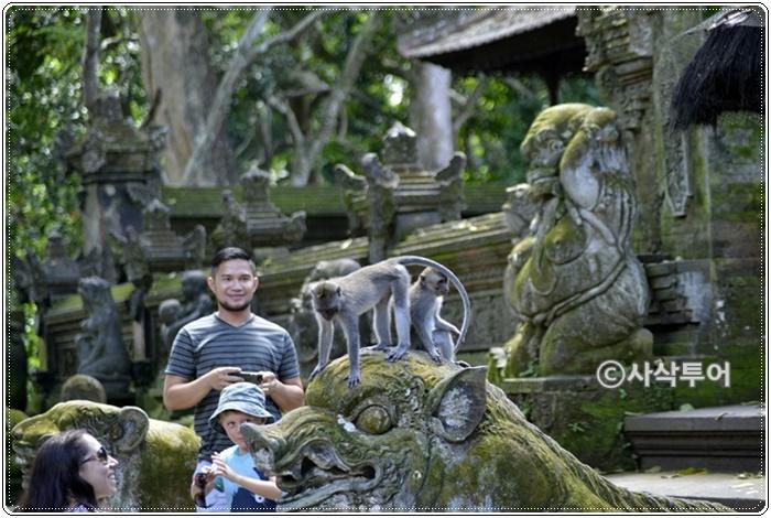 Bali9e939a327b1d670170f04c749d2cc0c4.JPG